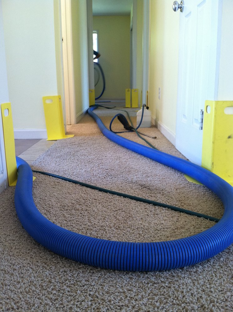 Carpet Cleaning Deals Murrieta Ca Expert Area Rug Carpet Cleaners