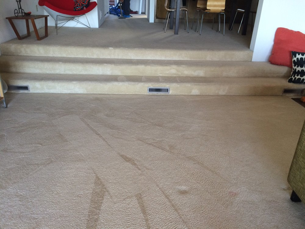 Getting Rid of Reappearing Carpet Spots Murrieta Carpet Cleaners
