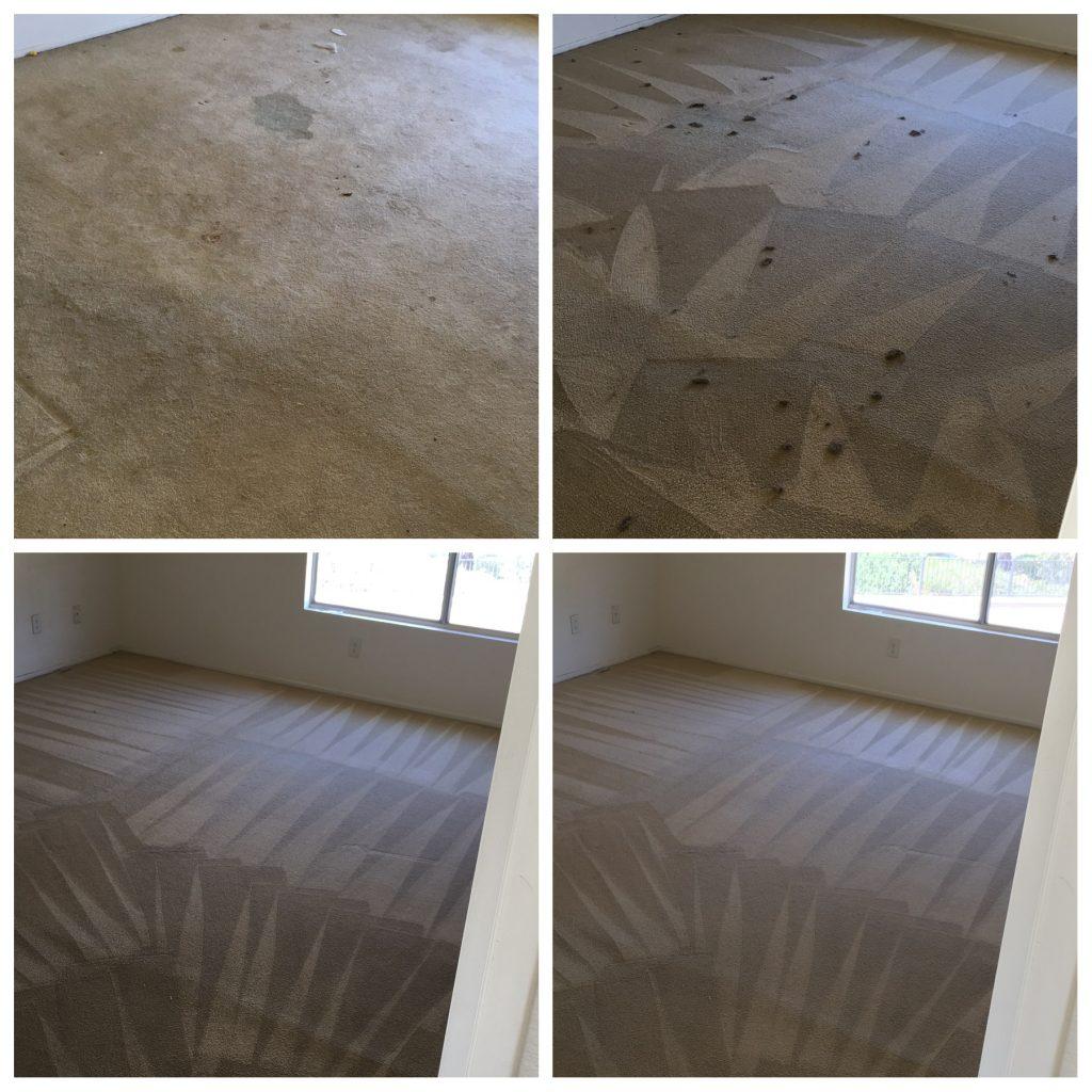 Apartment Carpet Cleaning Service Murrieta Carpet Cleaning Services